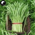 Buy Spinach Vegetables Seeds 600pcs Plant Leaf Vegetable Spinach