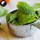 Buy Vanilla Peppermint Vegetables Seeds 150pcs Plant Leaf Nepeta Cataria