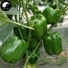 Buy Green Sweet Pepper Seeds 400pcs Plant Bell Pepper Vegetables Capsicum