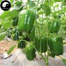Buy Green Sweet Pepper Seeds 200pcs Plant Bell Pepper Vegetables Capsicum