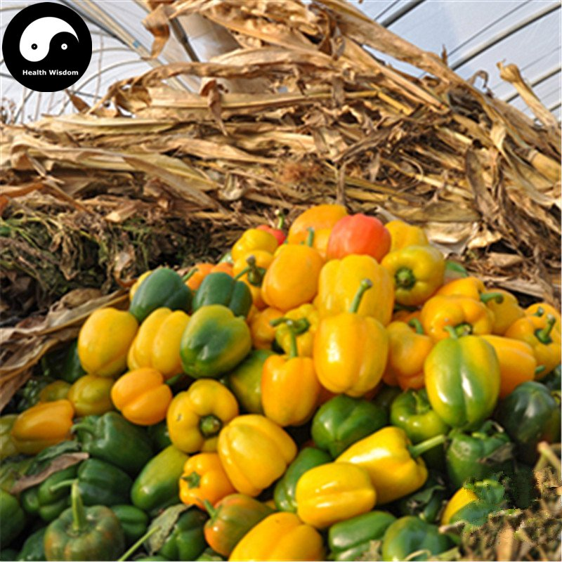 Buy Color Sweet Pepper Seeds 100pcs Plant Bell Pepper Vegetables Hot Pepper