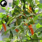 Buy Yellow Hot Chili Seeds 200pcs Plant Pepper Vegetables Super Chili