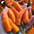 Buy Yellow Hot Chili Seeds 400pcs Plant Pepper Vegetables Super Chili