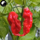 Buy Hot Chili Seeds 60pcs Plant Bhut Jolokia Vegetables Pucker Butt Pepper