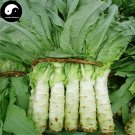 Buy Lettuce Vegetable Seeds 400pcs Plant Chinese Lactuca Sativa Wo Ju