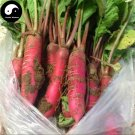 Buy Red Water Radish Vegetable Seeds 400pcs Plant Fruit Radish