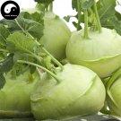 Buy Brassica Oleracea Vegetable Seeds 800pcs Plant Buds Vegetables Ball Cabbage
