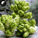 Buy Brassica Juncea Vegetable Seeds 400pcs Plant Buds Vegetables Mustard Buds