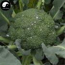 Buy Green Cauliflower Vegetable Seeds 200pcs Plant Broccoli Vegetables