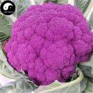 Buy Purple Cauliflower Vegetable Seeds 200pcs Plant Rare Broccoli Vegetables