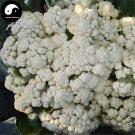 Buy Loose White Cauliflower Vegetable Seeds 400pcs Plant Broccoli Vegetables