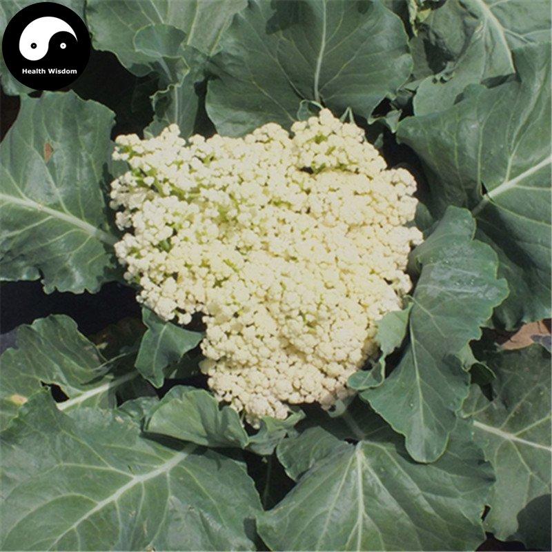 how to keep cauliflower white in the garden