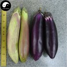 Buy Long Color Eggplant Vegetable Seeds 400pcs Plant Eggplant Vegetables Solanum Melongena