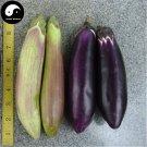 Buy Long Color Eggplant Vegetable Seeds 400pcs Plant Eggplant Vegetables Solanum Melongena