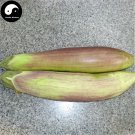 Buy Long Color Eggplant Vegetable Seeds 200pcs Plant Eggplant Vegetables Solanum Melongena