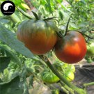 Buy Color Tomatoes Vegetable Seeds 400pcs Plant Chinese Fruit Tomatoes