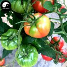 Buy Tomatoes Vegetable Seeds 100pcs Plant Chinese Rare Fruit Tomatoes