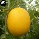Buy Yellow Cucumis Melon Seeds 120pcs Plant Sugar Melon Sweet Muskmelon