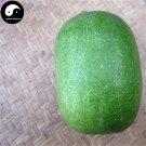 Buy Benincasa Hispida Seeds 50pcs Plant Melon Vegetable Green Benincasa Hispida
