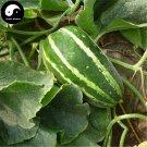Buy Crisp Melon Seeds 100pcs Plant Snake Melon Vegetable Luffa Cylindrica