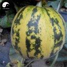 Buy Cucumis Melon Seeds 60pcs Plant Sweet Melon Vegetable Sugar Fruit Muskmelon