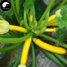 Buy Curuba Banana Melon Seeds 60pcs Plant Melon Vegetable Cassabanana Gourd