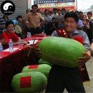 Buy Watermelon Fruit Seeds 120pcs Plant Citrullus Lanatus Big Red Meat Watermelon
