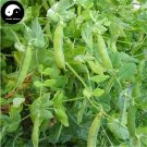 Buy Snow Peas Vegetable Seeds 200pcs Plant Sweet Beans Lathyrus Odoratus