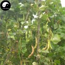Buy White Kidney Beans Vegetable Seeds 200pcs Plant Phaseolus Vulgaris White Beans
