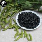 Buy Black Soya Bean Vegetable Seeds 200pcs Plant Chinese Bean Glycinemax