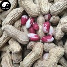 Buy Color Peanut Fruit Seeds 30pcs Plant Chinese Earth Bean Groundnut Arachis Hypogaea