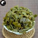 Oolong Tea Golden Osmanthus 100g Chinese Anxi Kungfu Wulong Tea Huang Jin Gui