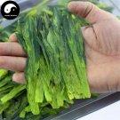 Green Tea Monkey Tea 100g Chinese Green Tea Tai Ping Hou Kui