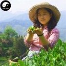 Green Tea Huang Shan Mao Feng 100g Chinese Organic Green Tea
