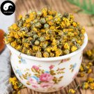 Ye Ju Hua 野菊花, Wild Flos Chrysanthemi, Florists Chrysanthemum Flower 100g