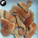 Lei Gong Teng 雷公藤, Common Threewingnut Root, Radix Tripterygii Wilfordii 200g