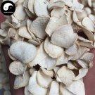 Ge Shan Xiao 隔山消, Bunge Auriculate Root, Radix Cynanchi Auriculati, Bai Shou Wu 200g