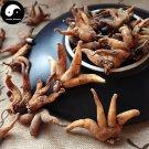 Shou Zhang Shen 手掌参, Conic Gymnadenia Rhizome, Gymnadenia Conopsea 200g