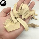 Mao Dong Qing 毛冬青, Pubescent Holly Root, Radix Ilicis Pubescentis 100g