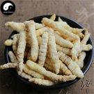Cao Shi Can 草石蚕, Stachys Sieboldii Root, Di Can, Gan Lu Zi, Chinese Artichoke 500g