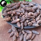 Xiang Fu Ge 香附个, Rhizoma Cyperi, Nutgrass Galingale Rhizome 200g