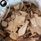 Xiang Zhang Gen 香樟根, Comphortree Root, Radix Cinnamomi Camphorae, Xiang Tong 500g
