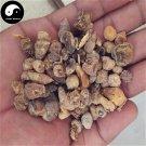 Shan Ci Gu 山慈菇, Indian Iphigenia Bulb, Rhizoma Pleionis 50g
