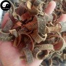 Hai Tong Pi 海桐皮, Cortex Erythrinae, Aralia Chinensis Bark 500g