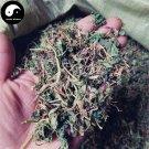 Zi Hua Di Ding 紫花地丁, Herba Violae, Philippine Violet Herb, Viola Philippica 200g
