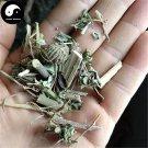 Mo Pan Cao 磨盤草, Herba Abutilon Indicum 200g