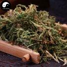 Cui Yun Cao 翠雲草, Uncinata Spikemoss Herb, Herba Selaginellae Uncinatae, Di Bai Ye 200g