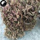 Pan Long Shen 盤龍參, Chinese Ladiestresses Herb, Herba Spiranthis Lanceae, Pan Long Cao 50g