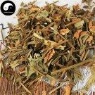Deng Zhan Xi Xin 燈盞細辛, Herba Erigerontis, Deng Zhan Cao 100g