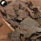 Qing Qian Liu Ye 青钱柳叶, Cyclocarya Paliurus Leaf, Lower Blood Pressure Herba Tea 200g